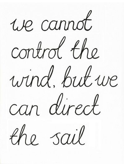 we cannot control the wind, but we can direct the sail #quote