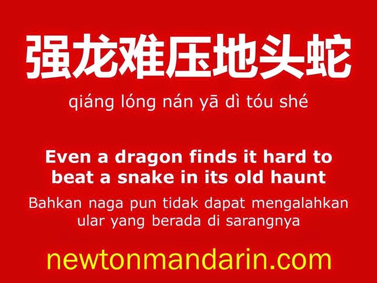 newtonmandarin.com: Dragon in snake's pit... doesn't fit ^,^