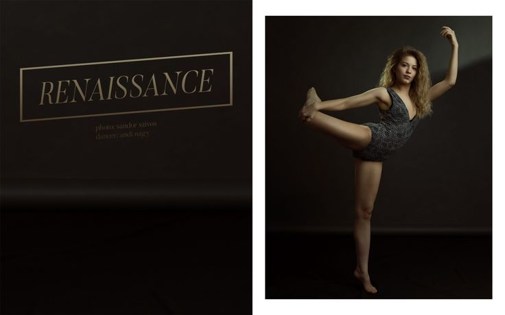 . renaissance . page no.1 by Sandor Szivos on Behance
