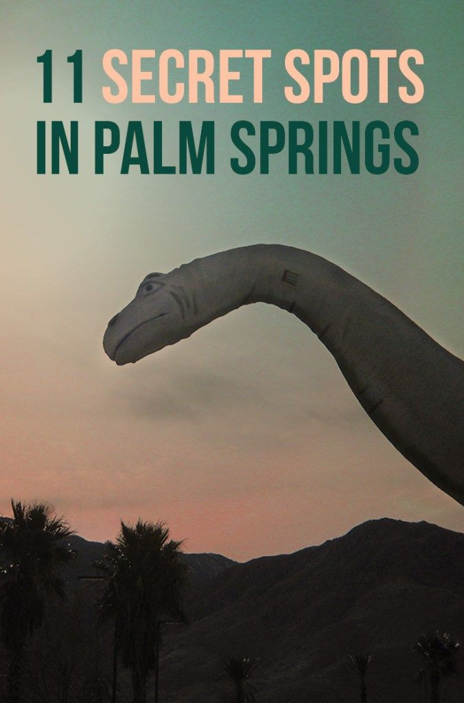 Let's explore Palm Springs off the beaten path and these fun but weird things to do in Palm Springs. #palmsprings What is there to do in Palm Springs? Hiking in Indian Canyons, visit the Palm Springs Art Museum, see Robolights, take a photo with #thatpinkdoor, go horseback riding and more! #california