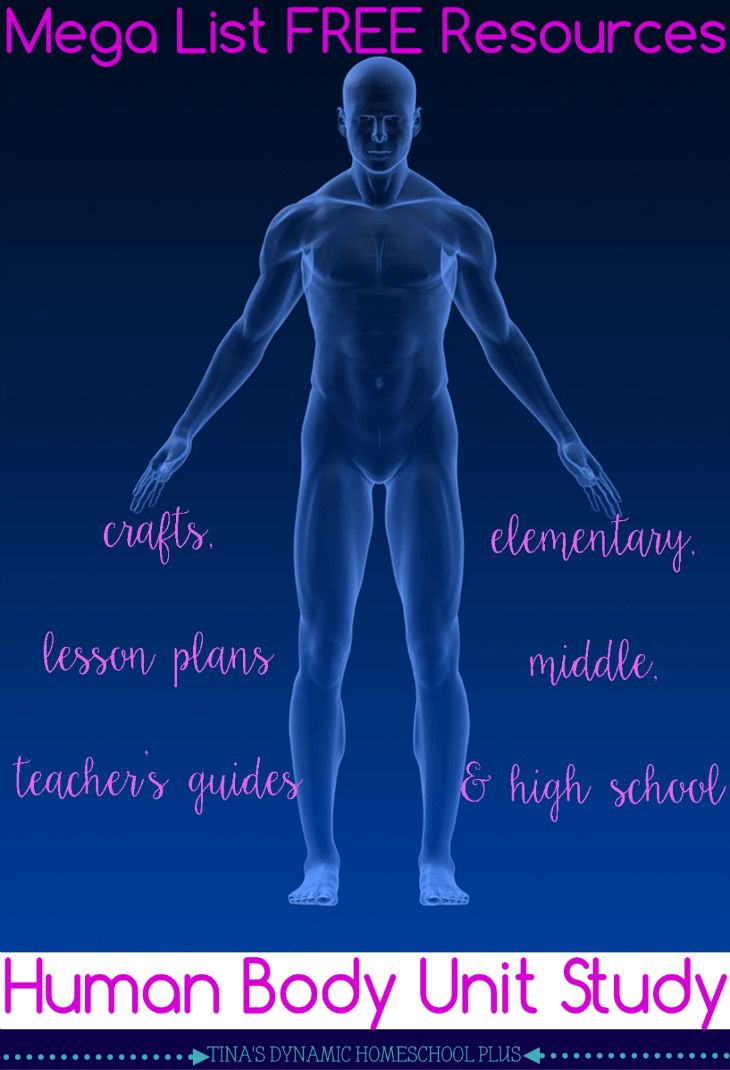 Mega List Free Resources for Human Body Homeschool Unit Study. Crafts, Lesson Plans,Teachers Guides for Elementary, Middle and High School @ Tina's Dynamic Homeschool Plus