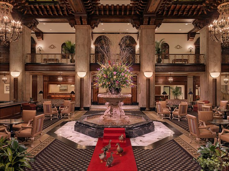"""Unusual & Unique Vacation Destinations: Peabody Hotel, Memphis, Tennessee.This luxury hotel in downtown Memphis is famous for the """"Peabody Ducks."""" Yes, you read that correctly. During your stay at this spot with over 450 rooms, you will also be sharing a space with a number of ducks that live on the hotel rooftop and regularly take strolls through the lobby. The story goes that the general manager of the hotel at the time, Frank Schutt, thought it'd be funny to leave three duck decoys"""