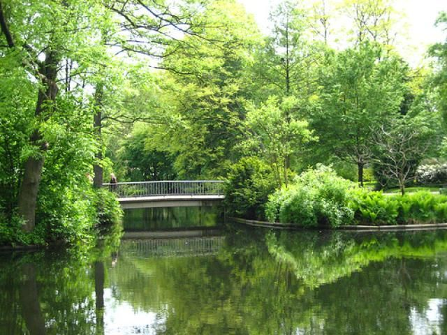 Guide to Berlin's Tiergarten, Berlin's largest public park; find out about beer gardens, cafes, and sights in the Tiergarten in Berlin.
