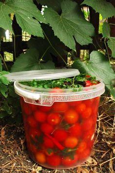 соленые помидоры черри в ведерке