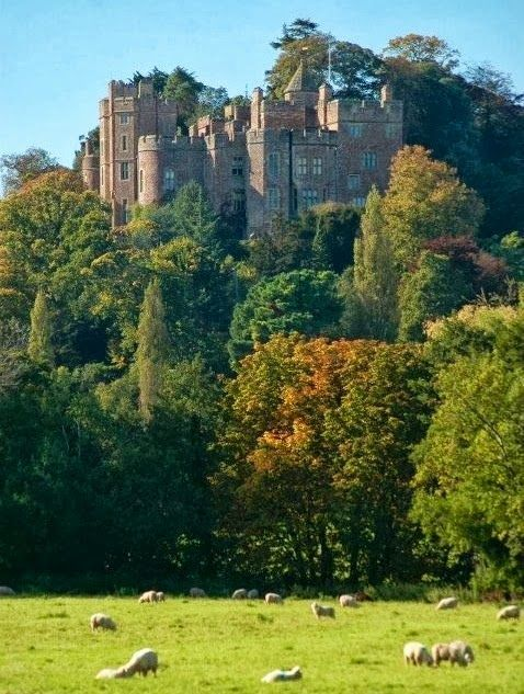 England Travel Inspiration - Dunster Castle. Exmoor. Somerset, UK. The castle is wonderful but the Grounds are exceptional ☆