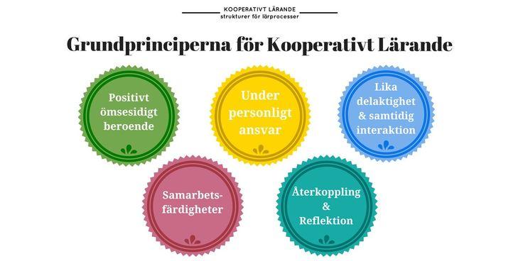 Kooperativt Lärande består av stor samling samarbetsformer, så kallade 'strukturer' vilka baserar sig på några grundläggande principer. Om så bara en princip saknas i en struktur räknas den inte in under begreppet Kooperativt Lärande.