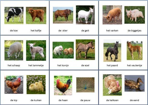 Themakaarten dieren - boerderijdieren ~ Juf Milou