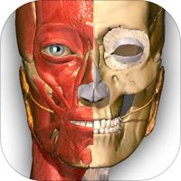 Visual Anatomy Free- Medical Dictionary for Medical Student by Nguyen Thai