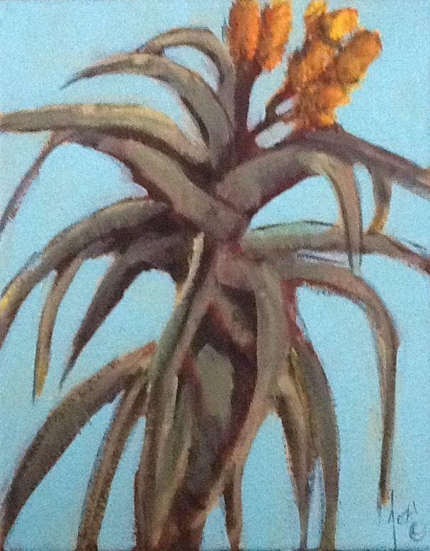 Aloe by Jocelyn