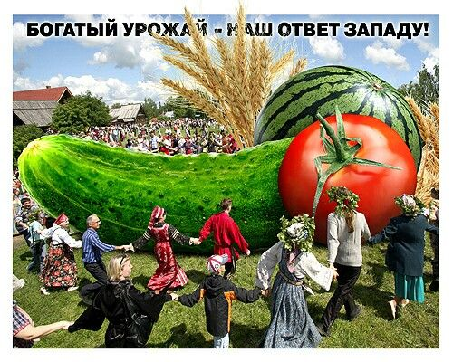 bestcollage.ru
