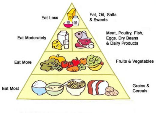 Juice master diet plan recipes