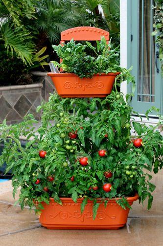 Balcony Planters, Flower Planters, Outdoor Planters, Garden Planters, Condo  Balcony, Balcony Flowers, Balcony Garden, Veg Garden, The Balcony