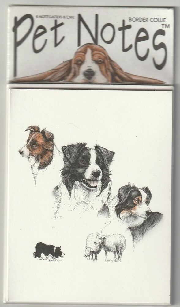 """Border Collie Dog Pet Notes Blank Note Cards 6 Cards /& Envelopes 5.5/"""" X 4.25/"""""""