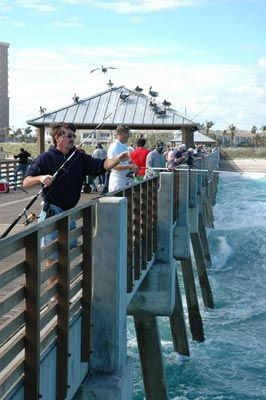 1000 images about fishing surf beach ocean on pinterest for Best pier fishing rod