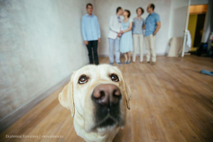 #семья #пикник #ekaterinakovaleva #family #photo #russia #dog #familyphoto #photography