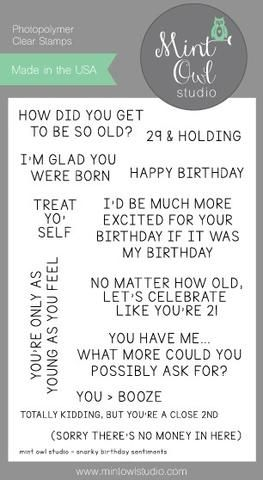 Mint Owl Studio SNARKY BIRTHDAY Clear Stamp MOS1438 Preview Image