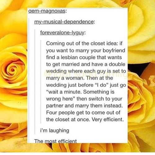 That's so awesome... kinda reminds me of Glee's double wedding with Brittany & Santana, and Kurt & Blaine.
