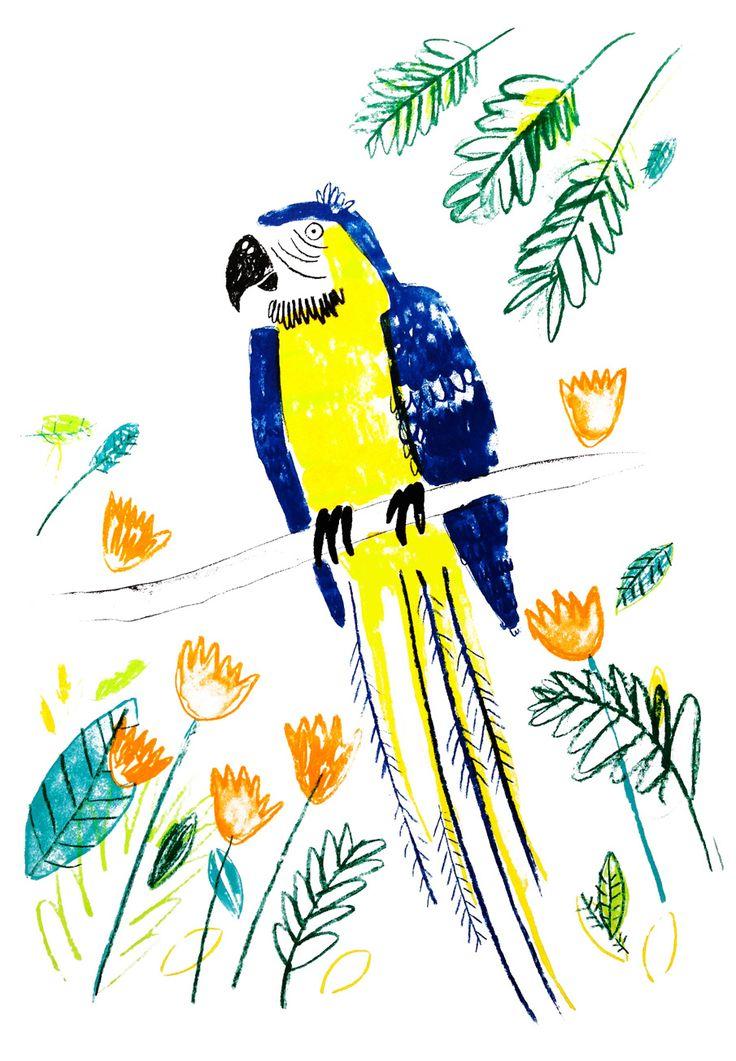 Parrotdise - Lorna Scobie Illustration