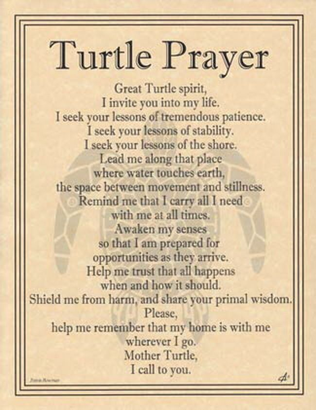 TURTLE PRAYER POSTER A4 SIZE Wicca Pagan Witch Witchcraft Goth BOOK OF SHADOWS