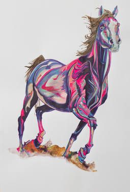 Majestic; A full portrait of a beautiful Arabian Stallion painted in mid gallop. His gaze is directly on his viewer and his colours are a reflection of his personality, bold and graceful. #Saatchi #Artist #Yaheya #Painting #art #equestrian #horse #equine