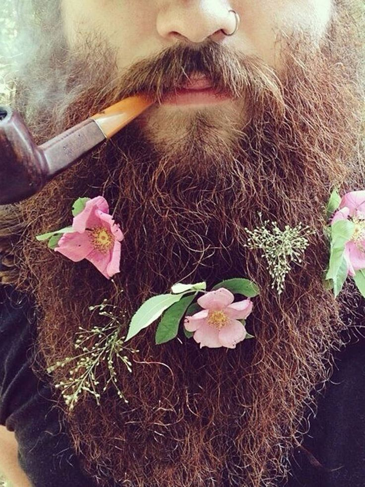 In pictures: Flower beards... say what?! are people actually growing flowers in their beards? Wow if so... way to be green