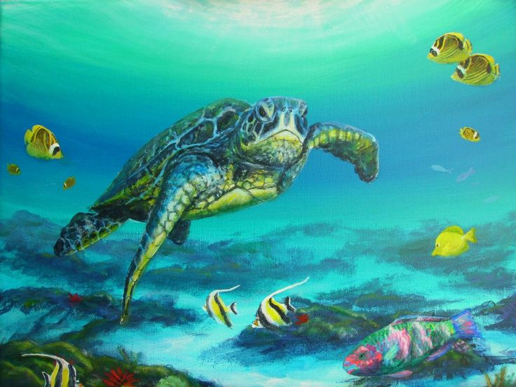 sea turtle painting underwater art moorish idols