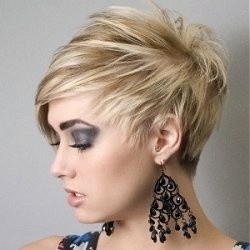 Marvelous 1000 Images About Short Hair Styles Round Face On Pinterest Short Hairstyles Gunalazisus