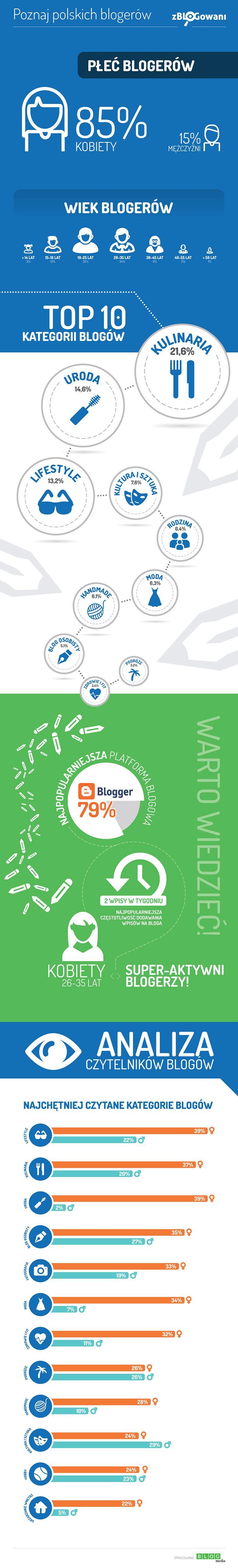 Blogerzy Polscy - infografika