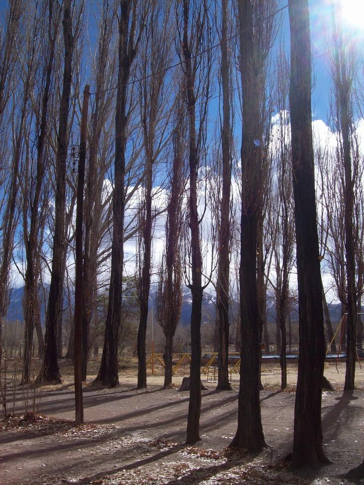Uspallata - Cordillera de los Andes