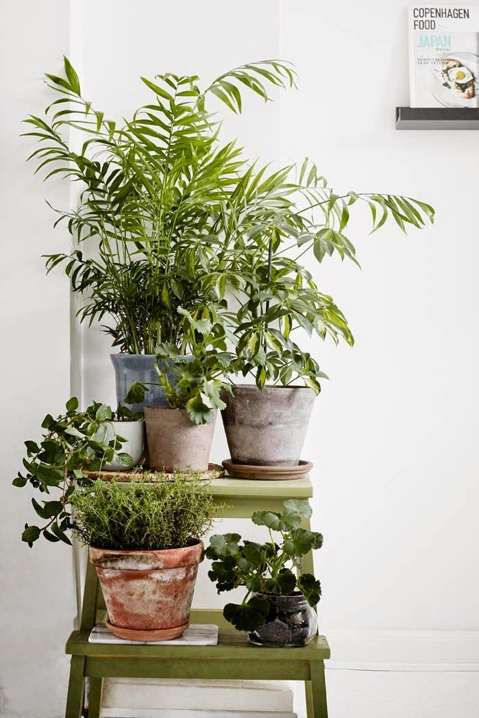 Plant stand painted IKEA step stool