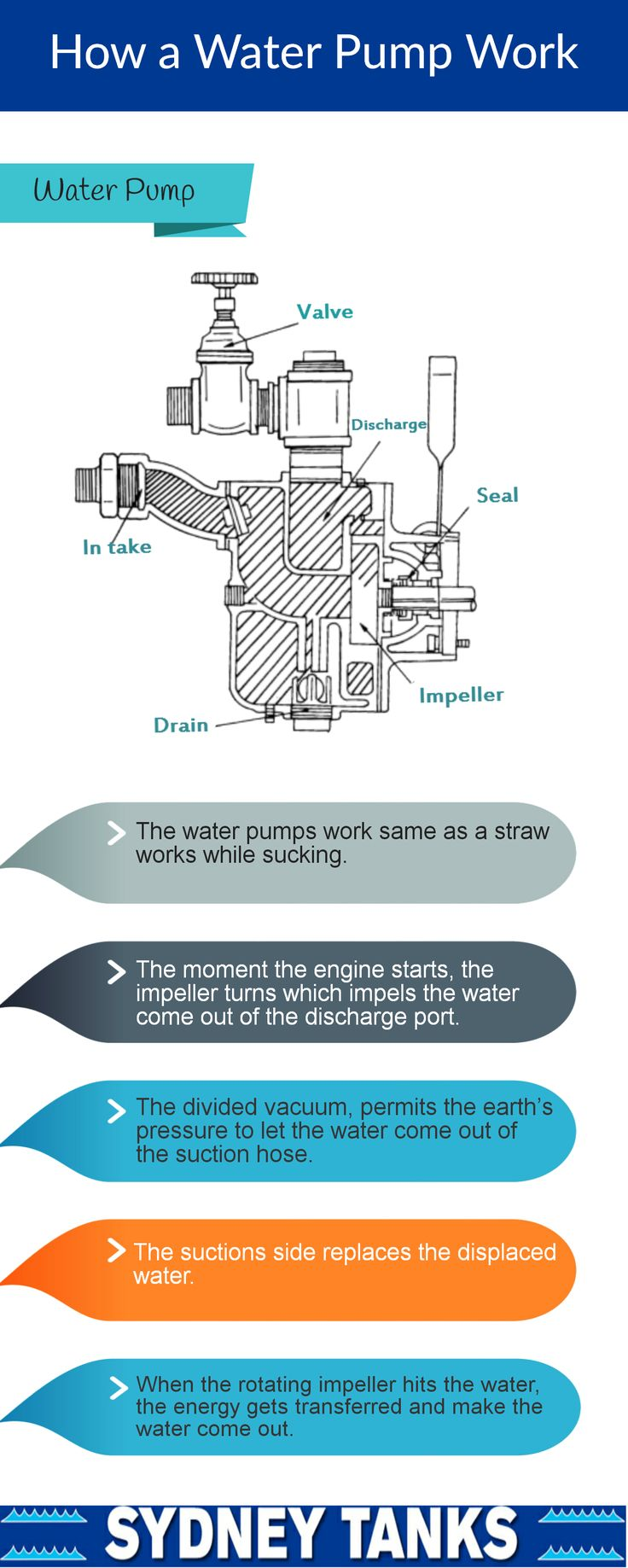 Water pump seems to be simple machinery, but its working is really impressive as well as interesting. It uses force and the suction process to bring water to the hose. Go through this infographic to understand better how it works.
