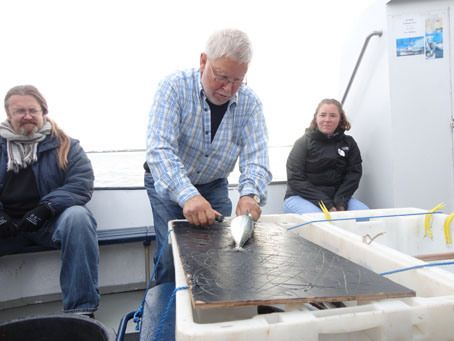 Sea Angling tour (eat fish on the boat in the harbor!)