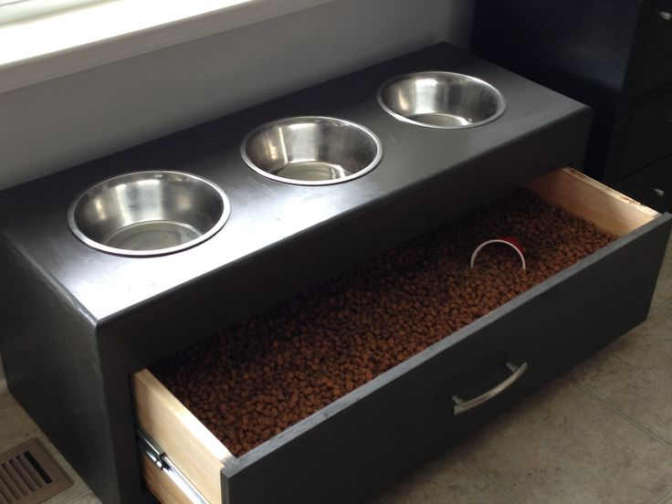 Dog feeder with food storage for the pups!  I wonder if I could make this.