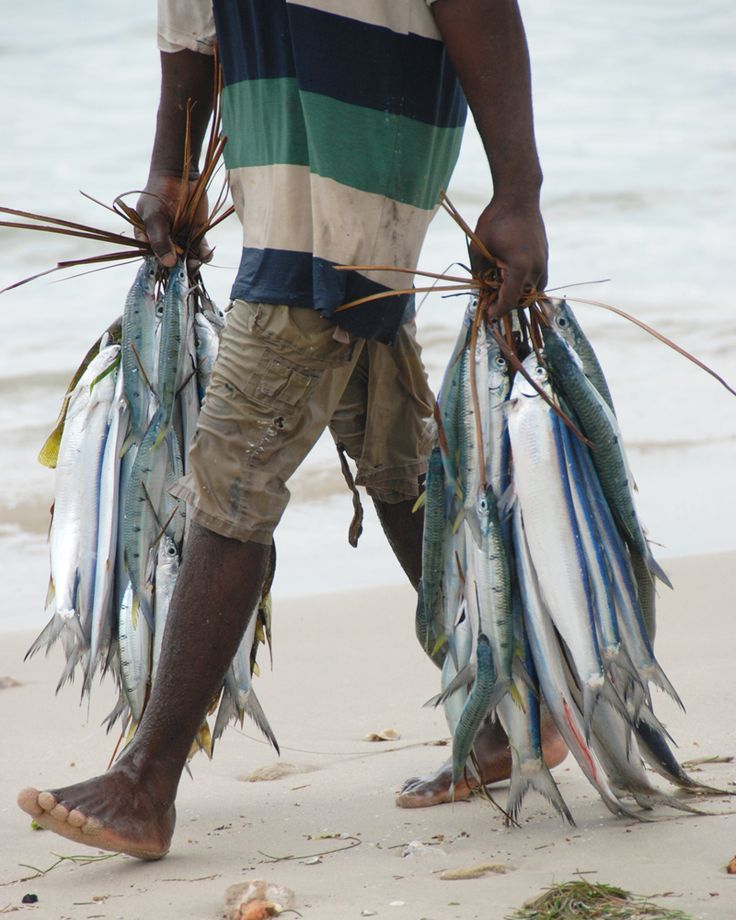 Early morning catch in Bagamoyo, Tanzania