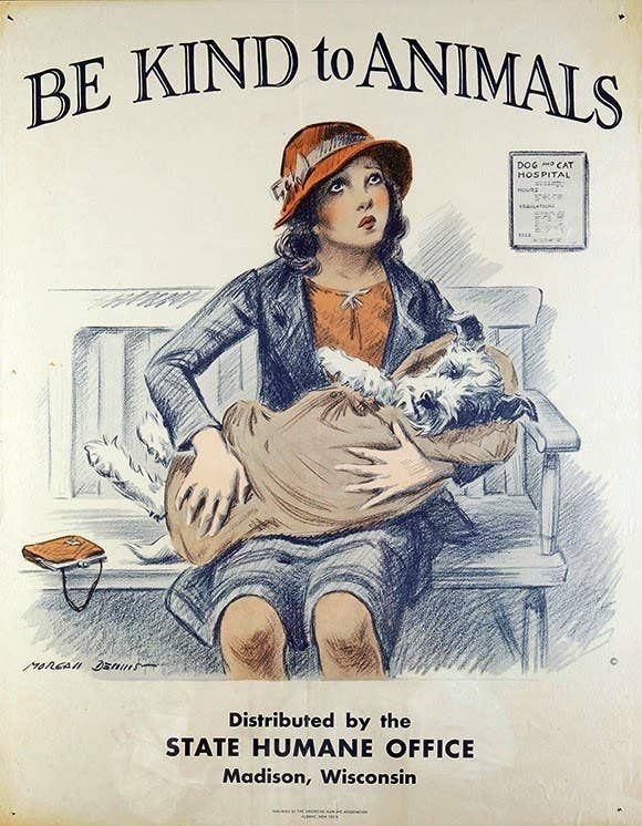 7 Vintage Posters That Prove Kindness To Animals Isn T A New Idea Kindness To Animals Animals Vintage Posters
