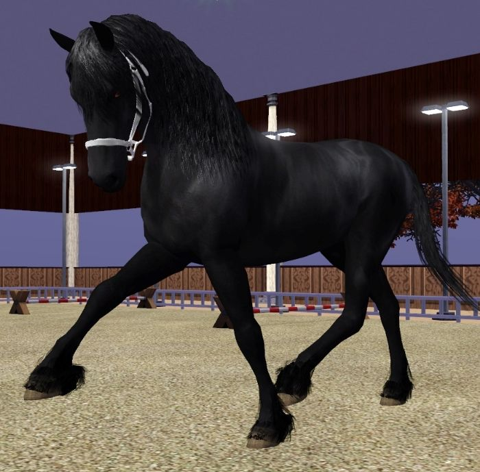 Friesian feathering v3 - by Sapphire VenderMarwe on Equus-Sims