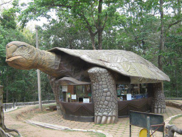 Turtle Inn, Thekkady Wildlife Sanctuary, India