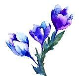 Lente bloemen aquarel illustratie photo