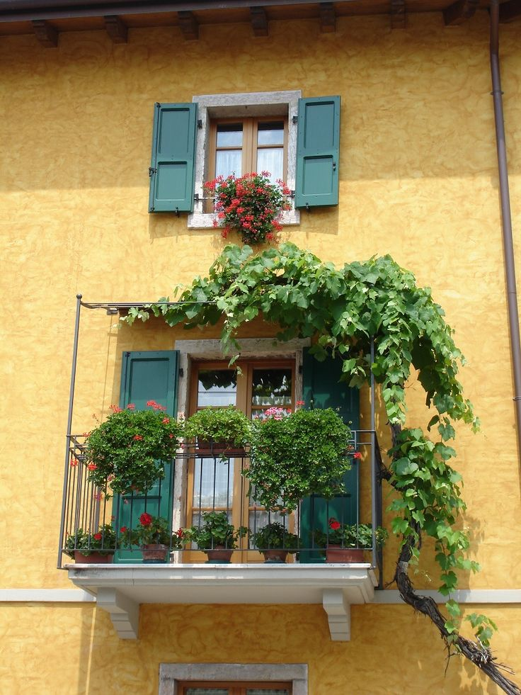 Balcony Garden with vegetation trellis