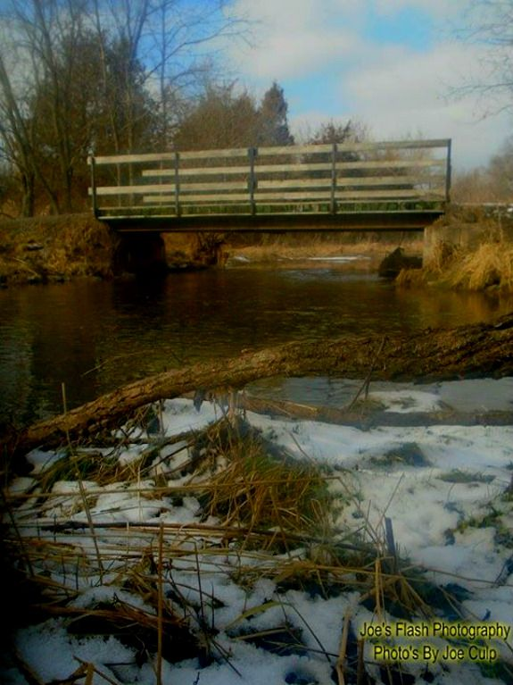 Walking Bridge over Potters Creek at Potters Creek conservation