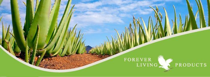 Forever Living Products wat een mooi bedrijf!