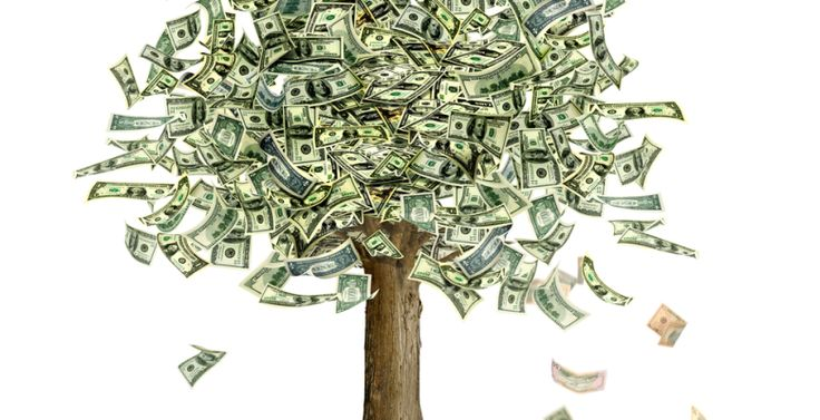 moneytree1-780x400