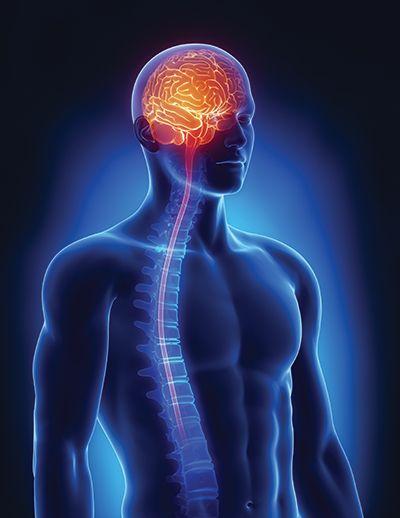 To get best #neurology & #neurosurgerytreatment from top neurosurgeons Visit here: https://goo.gl/0QHFxY