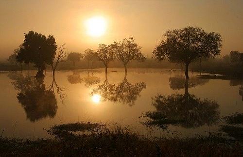 Kumana Dam in chilly winter's morning, near Skukuza Rest Camp, Kruger National Park