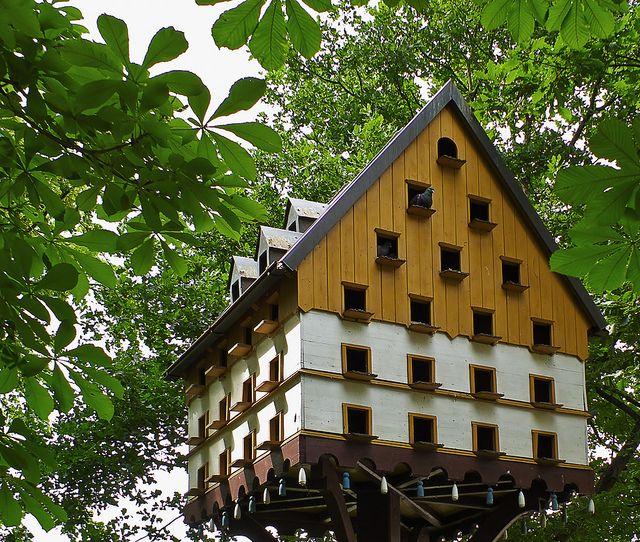 Taubenschlag   Flickr - Photo Sharing!