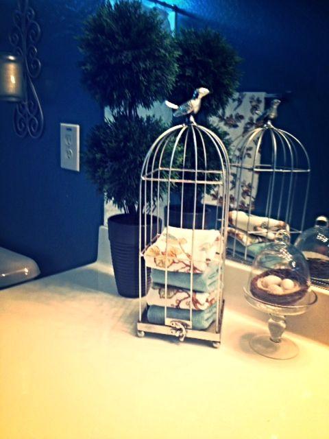 Bathroom Counter Decor: Bird Themed