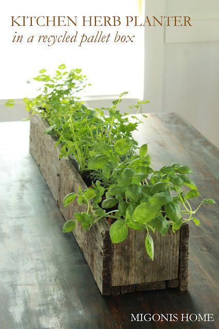 Diy pallet flower box gardens planters and herbs garden for Diy pallet herb garden