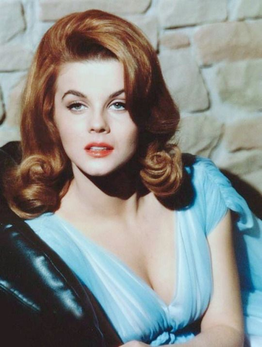 Ann Margret what a wonderful lady. Always put the troops first!