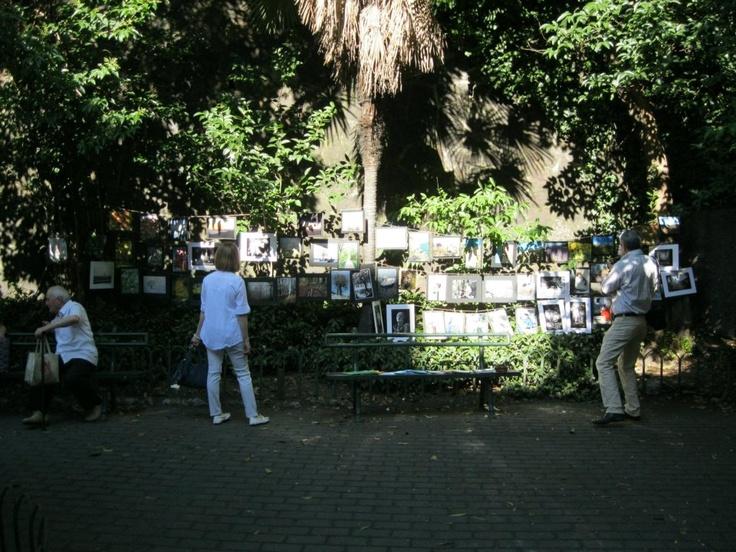 Festa del quartiere Rivarolo - Harley in Piazza  Cultura Corner - Fotografie e poesie in Via Rossini  — presso Genova Rivarolo.