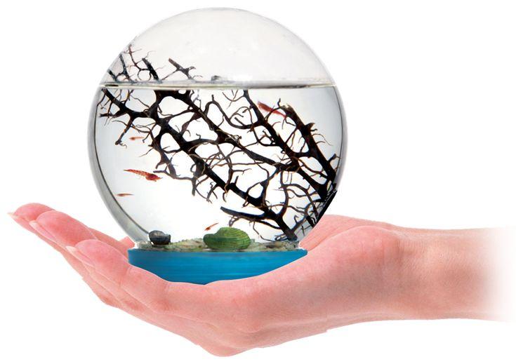 Økosystem kuppel til dekoration. Læs mere på bloggen frubruun.dk og find forhandler m.m.